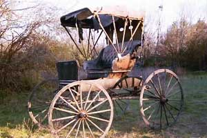 1904 banner buggy